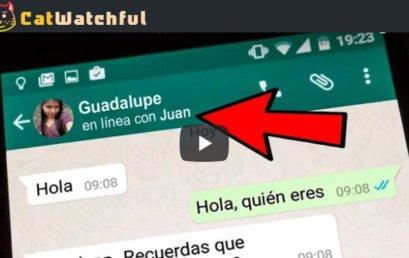 Ver MENSAJES de Whatsapp – Fotos – Vídeos – Llamadas ¡TODO!