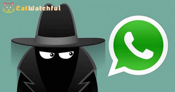 espiar whatsapp verdadero
