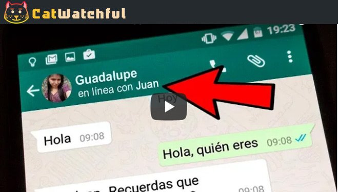 Ver MENSAJES de Whatsapp