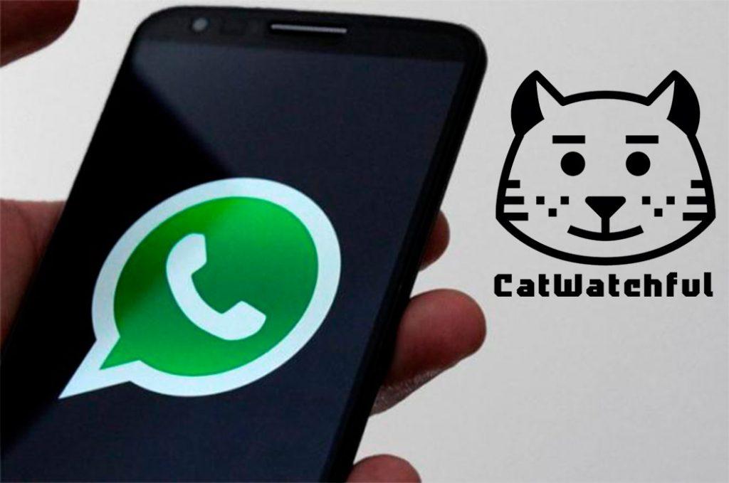 Catwatchful para espiar whatsapp 2019